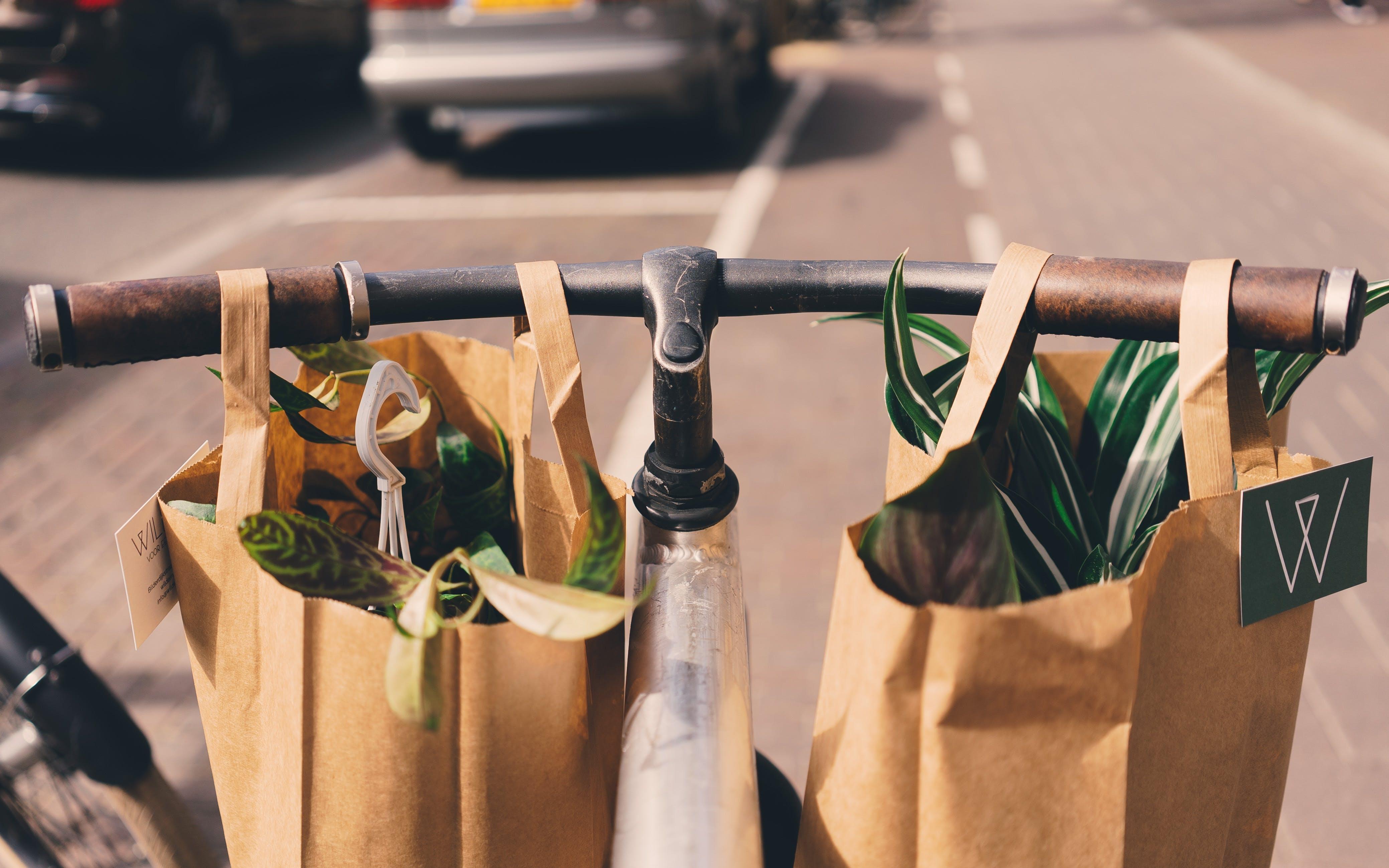 sustainable consumerism